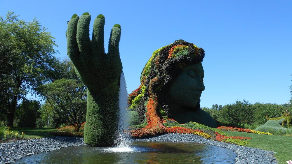 Garten- und Landschaftsbau - Soziale Unternehmen Berlin